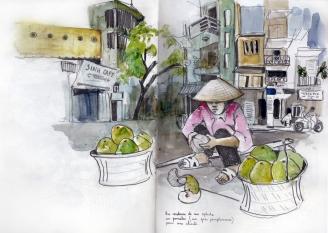 Hanoi Pomelos